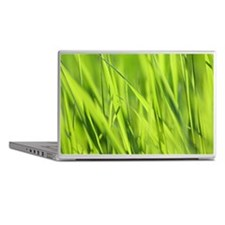 Minimal grass close-up Laptop Skins