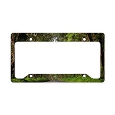 Tunnel of Trees, Kauai, Hawai License Plate Holder