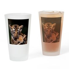 Young tiger cub chewing on sticks Drinking Glass