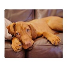 Lazy hungarian vizsla puppy dog Throw Blanket