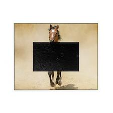 Shagya-Arabian horse cantering throu Picture Frame