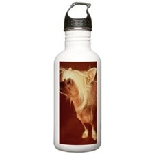 Chinese crested dog, c Water Bottle