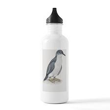 Eudyptula minor, Littl Water Bottle