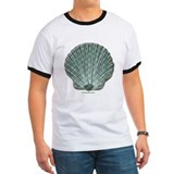 Blue-green Scallop Shell T