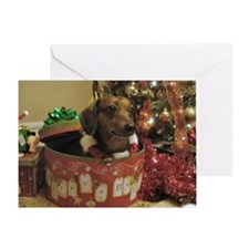 Christmas Dachshund Greeting Card