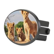 Lion cubs Hitch Cover