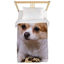 Chihuahua sitting on the cushion Twin Duvet