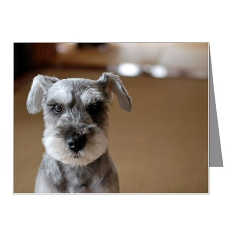 Close up of cute dog. Note Cards (Pk of 10)