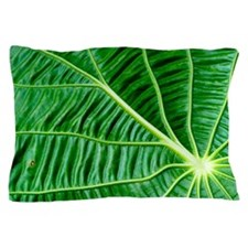 Close up of green leaf. Pillow Case