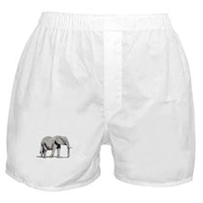 Elephant Boxer Shorts: Basic Elephant