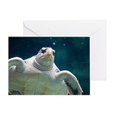 Close up of sea turtle in an aquariu Greeting Card