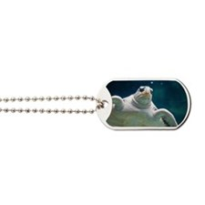 Close up of sea turtle in an aquarium Dog Tags
