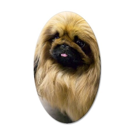 Closeup of pekingese puppies 35x21 Oval Wall Decal