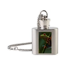 Costa Rica, Monteverde, Red-Eyed Tr Flask Necklace