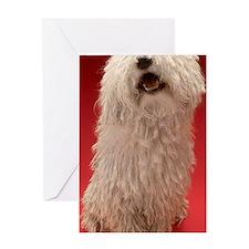Cute Komondor Dog Greeting Card