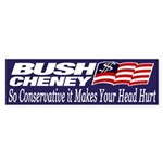 Bush-Cheney: So Conservative it Hurts