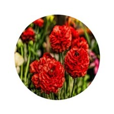 "red carnations 3.5"" Button"
