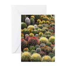 Cacti Greeting Card