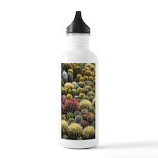 Cacti Water Bottle
