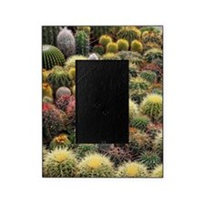 Cacti Picture Frame