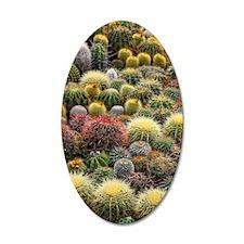 Cacti Wall Decal