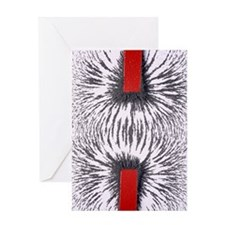 Magnetic attraction Greeting Card