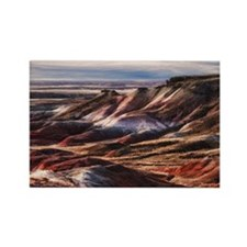 painted desert Rectangle Magnet