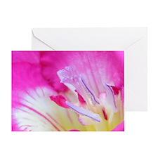 Freesia in macro Greeting Card