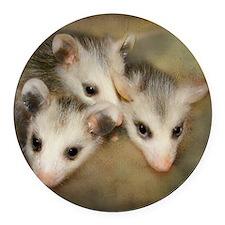 Possum BSnuttles Round Car Magnet