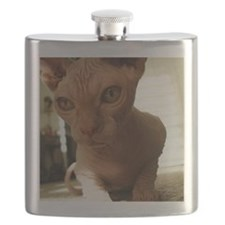 Naked Cat Up-Close Flask