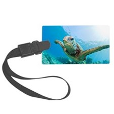 Green sea turtle swimming underw Luggage Tag