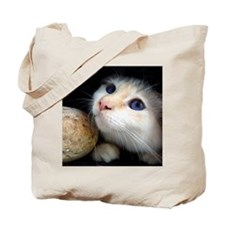 Cat in tunnel Tote Bag