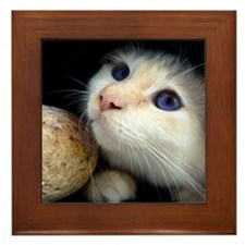 Cat in tunnel Framed Tile