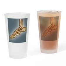 Normal foot, 3D CT scan Drinking Glass