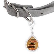 Conveyor belt sushi Small Teardrop Pet Tag