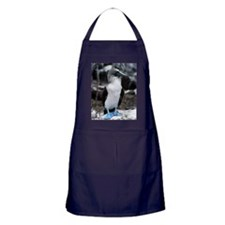 Blue-footed booby Apron (dark)