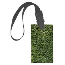 Ivy on a Wall Luggage Tag