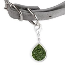 Ivy on a Wall Small Teardrop Pet Tag