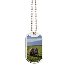 Elephant and Mt Kilamanjaro Dog Tags