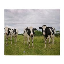 Cows, Nicolet, Nicolet-Yamaska Regio Throw Blanket