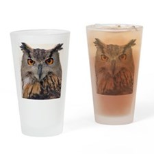 Owls well that ends well Drinking Glass
