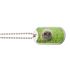 Hedgehog in spring Dog Tags