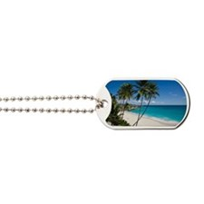 Unspoiled and secluded tropical beach, Bo Dog Tags