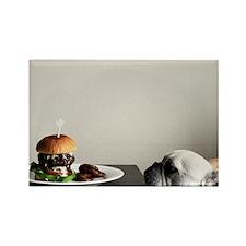 Hamburger and dog Rectangle Magnet