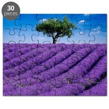 Lavender field in summer with one tree. Hau Puzzle
