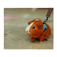 Guinea Pig on A Leash Throw Blanket