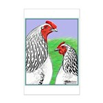 Columbian Cock and Hen Mini Poster Print