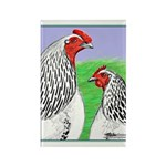 Columbian Cock and Hen Rectangle Magnet