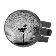 Tree and clouds sky Hitch Cover