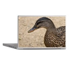 Duck Laptop Skins